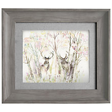 Buy Voyage - Enchanted Forest, Framed Print, 33 x 38cm Online at johnlewis.com