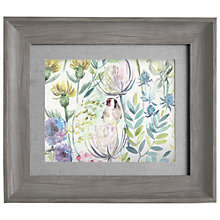 Buy Voyage - Morning Chorus, Framed Print, 33 x 38cm Online at johnlewis.com