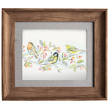 Buy Voyage - Chirp, Framed Print, 33 x 38cm Online at johnlewis.com