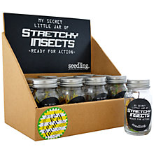 Buy Seedling Jar Of Stretchy Insects Online at johnlewis.com