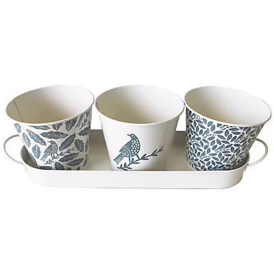 Hinchcliffe & Barber Songbird Herb Potter, Set of 3