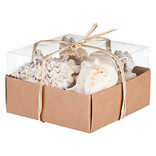 Buy Decoris Assorted Box of Shells Online at johnlewis.com