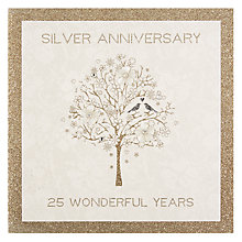 Buy Five Dollar Shake Silver Anniversary Card - 25 Wonderful Years Online at johnlewis.com