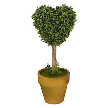 Buy Mini Heart Topiary Tree, Green Online at johnlewis.com