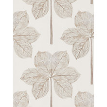 Buy Harlequin Lover's Knot Wallpaper Online at johnlewis.com