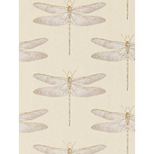 Buy Harlequin Demoiselle Wallpaper Online at johnlewis.com