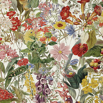 John Lewis Chelsea Floral Furnishing Fabric, Multi