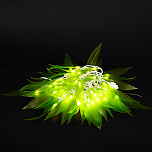 Buy Think Gadgets Leafantasy Outdoor Line Lights, 60, Green Online at johnlewis.com