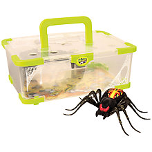 Buy Little Live Pets Wild Spider Habitat Set, Assorted Online at johnlewis.com