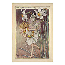Buy Cicely Mary Barker - Narcissus Fairy Unframed Print with Mount, 40 x 30cm Online at johnlewis.com