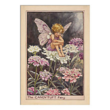 Buy Cicely Mary Barker - Candytuft Fairy Unframed Print with Mount, 40 x 30cm Online at johnlewis.com