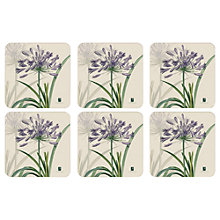 Buy Pimpernel Agapanthus Coasters, RHS Exclusive Design, Set of 6 Online at johnlewis.com