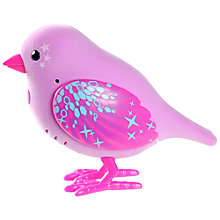 Buy Little Live Pets Tweet Talking Bird, Disco Daisy Online at johnlewis.com