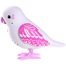 Buy Little Live Pets Tweet Talking Bird, Sweet Harmony Online at johnlewis.com