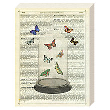 Buy Marion McConaghie - Butterfly Dome Canvas Print, 20 x 15cm Online at johnlewis.com
