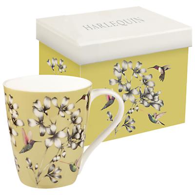 Harlequin Hummingbird Mug