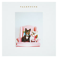 Buy Susan O'Hanlon French Bulldogs Valentine's Day Card Online at johnlewis.com