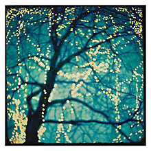 Buy Hotchpotch Fairy Lights in Blue Tree Card Online at johnlewis.com