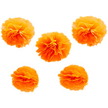 Buy Ginger Ray Neon Tissue Paper Pom Poms, Set of 5 Online at johnlewis.com