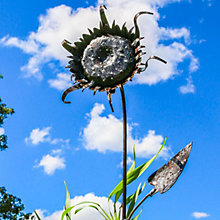 Buy RSPB Sunflower Plant Metal Stake Online at johnlewis.com