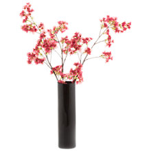 Buy Peony Pink Blossom in a Black Cylinder Vase Online at johnlewis.com
