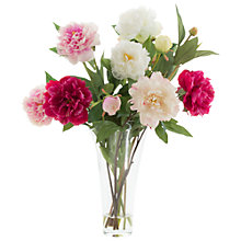Buy Peony Mixed Peonies in Glass Vase Online at johnlewis.com
