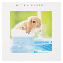 Buy Susan O'hanlon Bunny In Boot Easter Card Online at johnlewis.com