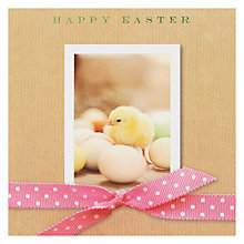 Buy Susan O'hanlon Chick & Eggs Easter Card Online at johnlewis.com