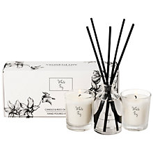 Buy Stoneglow Scented Candles and Diffuser Gift Set, New White Fig Online at johnlewis.com