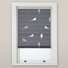 Buy John Lewis Bird on a Wire Roller Blind Online at johnlewis.com