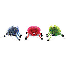 Buy Hexbug Beetle, Assorted Online at johnlewis.com