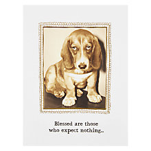 Buy Pigment Disappointed Dog Greetings Card Online at johnlewis.com