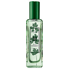 Buy Jo Malone London Wild Strawberry & Parsley Cologne, 30ml Online at johnlewis.com