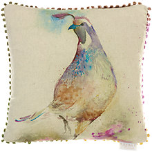 Buy Voyage Quail Cushion Online at johnlewis.com