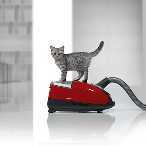 Buy Miele Complete C2 Cat Amp Dog Powerline Vacuum Cleaner