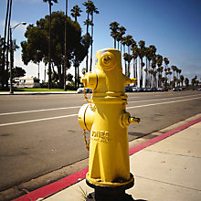 Buy Lola James Harper Barbara Yellow Hydrant Unframed Print Online at johnlewis.com