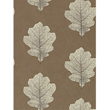 Buy Sanderson Oak Filigree Wallpaper Online at johnlewis.com