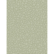 Buy Cole & Son Pebble Wallpaper Online at johnlewis.com
