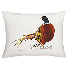 Buy Ben Rothery Pheasant Cushion Online at johnlewis.com