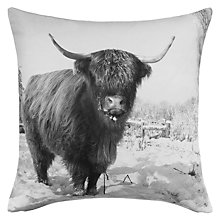 Buy John Lewis Ruskin House Highland Cow Cushion Online at johnlewis.com