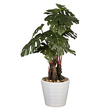 Buy John Lewis Artificial Cheese Plant Online at johnlewis.com