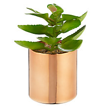 Buy John Lewis Cactus in Metallic Pot, 5.25in, Green Online at johnlewis.com