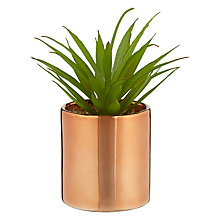 Buy John Lewis Cactus in Metallic Pot, 7 inches Online at johnlewis.com