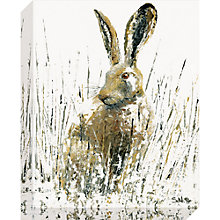 Buy Sarah Pye - Snow Hare Canvas Print, 40 x 50cm Online at johnlewis.com