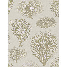 Buy Cole & Son Seafern Wallpaper Online at johnlewis.com
