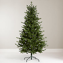 Buy John Lewis 6ft Alpine Spruce Christmas Tree Online at johnlewis.com