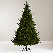 Buy John Lewis 7ft Ambleside Pine Christmas Tree Online at johnlewis.com