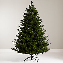 Buy John Lewis Ruskin House 7ft Morris Spruce Christmas Tree Online at johnlewis.com