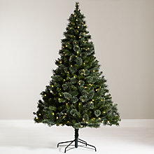 Buy John Lewis Grand Tour 7ft Kashmir Pre-Lit Pine Christmas Tree Online at johnlewis.com