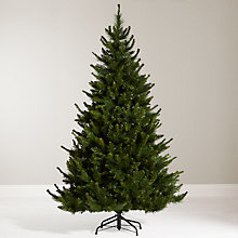Buy John Lewis 6ft Ambleside Pine Christmas Tree Online at johnlewis.com